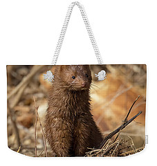 Weekender Tote Bag featuring the photograph American Mink At Johnson Park by Ricky L Jones