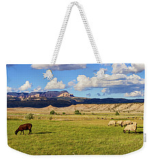 Weekender Tote Bag featuring the photograph American Pastoral by Arthur Dodd