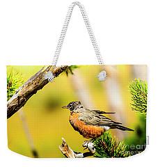 American Robin Weekender Tote Bag