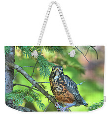Weekender Tote Bag featuring the photograph American Robin Fledgling by Debbie Stahre