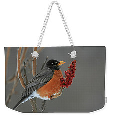 American Robin On Sumac Weekender Tote Bag