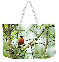 American Robin On Tree Branch Weekender Tote Bag