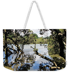 Weekender Tote Bag featuring the photograph Amidst The Mangroves by Dianne  Connolly