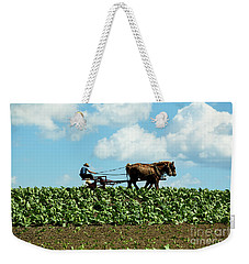 Amish Farmer With Horses In Tobacco Field Weekender Tote Bag