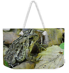 Weekender Tote Bag featuring the digital art Among The Leaves by Kathy Kelly