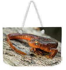 Amphibious Weekender Tote Bag