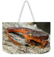 Amphibious Weekender Tote Bag by Scott Warner