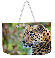 Amur Leopard Portrait Weekender Tote Bag