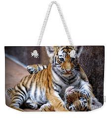 Amur Tiger Cubs Weekender Tote Bag