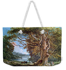 An Ancient Beech Tree Weekender Tote Bag