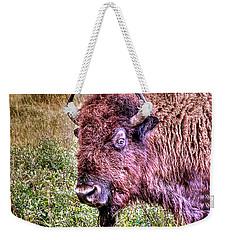 An Astonished Bison Weekender Tote Bag