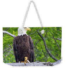 An Eagles World Weekender Tote Bag