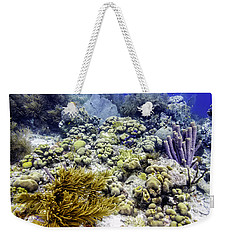 Weekender Tote Bag featuring the photograph An Explosion Of Life II by Perla Copernik