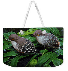 An Old Couple These Two Birds Weekender Tote Bag