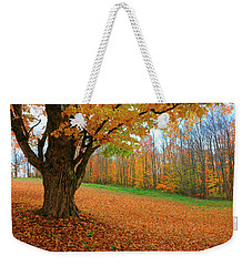 An Old Maple Tree In Autumn Color Weekender Tote Bag