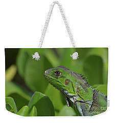 An Up Close Look At A Green Iguana Weekender Tote Bag by DejaVu Designs