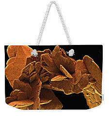 Weekender Tote Bag featuring the photograph Ancient History by Lynda Lehmann