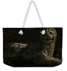 Weekender Tote Bag featuring the photograph Ancient Lion - Nocisia  by Jim Vance
