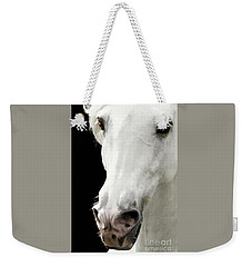 Weekender Tote Bag featuring the photograph Andalusian Stallion by Melinda Hughes-Berland