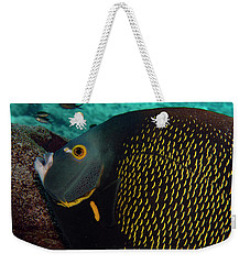 Weekender Tote Bag featuring the photograph Angel Profile by Jean Noren