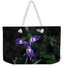 Weekender Tote Bag featuring the photograph Angelpod Blue Flag by Sally Weigand