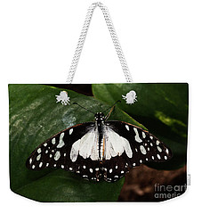 Angola White Lady Butterfly  Weekender Tote Bag