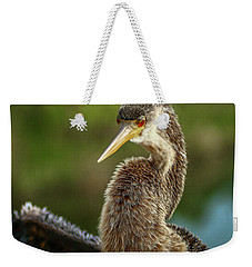Anhinga Close-up #2 Weekender Tote Bag
