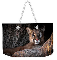 Weekender Tote Bag featuring the photograph Annoyed Look by Elaine Malott