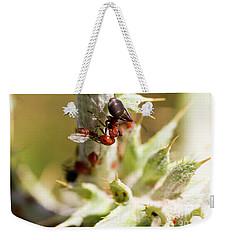 Ant Farming Weekender Tote Bag