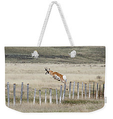Weekender Tote Bag featuring the photograph Antelope Jumping Fence 2 by Rebecca Margraf