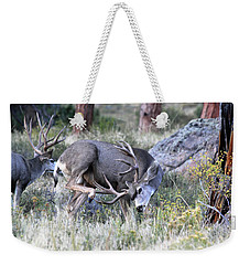 Weekender Tote Bag featuring the photograph Antler Scratch by Shane Bechler