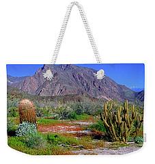 Anza-borrego Desert State Park Ca Weekender Tote Bag