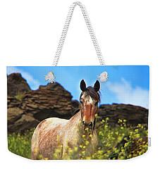 Appaloosa Mustang In The Wild. Weekender Tote Bag
