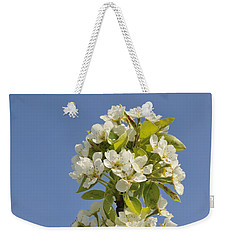 Apple Blossom In Spring Weekender Tote Bag by Matthias Hauser