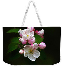 Apple Blossom Time Weekender Tote Bag by Trey Foerster