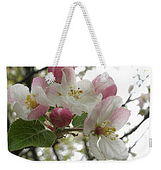 Weekender Tote Bag featuring the photograph Apple Blossoms - Wild Apple by Angie Rea