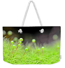 Apple Moss Weekender Tote Bag