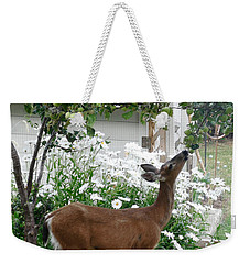 Apple Thief Weekender Tote Bag