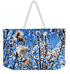 Weekender Tote Bag featuring the photograph Apricot Blossoms by Glenn McCarthy Art and Photography