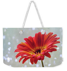 Weekender Tote Bag featuring the photograph April Showers Gerbera Daisy Square by Terry DeLuco