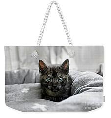 Aqua Eyes By Kaye Menner Weekender Tote Bag