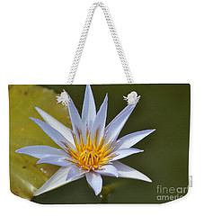 Aquatic Beauty Weekender Tote Bag