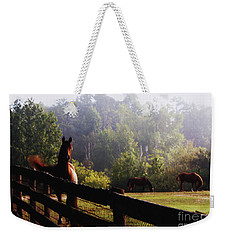 Arabian Horses In Field Weekender Tote Bag