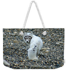 Arctic Fox Weekender Tote Bag by Anthony Jones