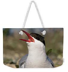 Arctic Tern - St John's Pool, Scotland Weekender Tote Bag