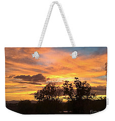 Weekender Tote Bag featuring the photograph Arizona Awesome by Anne Rodkin