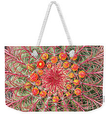 Arizona Barrel Cactus Weekender Tote Bag by Delphimages Photo Creations