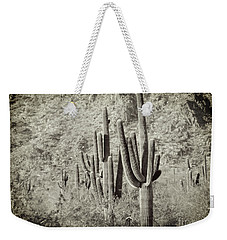Arizona Desert 2 Weekender Tote Bag