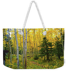 Weekender Tote Bag featuring the photograph Arizona Fall by Broderick Delaney