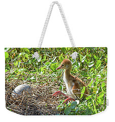 Are You Coming Out? Weekender Tote Bag